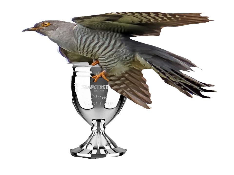 Koekoek cup 2021